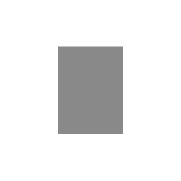 見智科技-48V/55A 鋰電池自動充電站應用