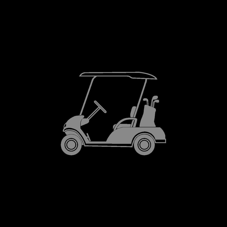 見智科技-46.8 V/22AH 高爾夫球車鋰電池應用